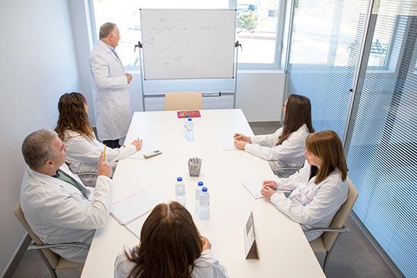 Equipo Neoflex en sala de reuniones